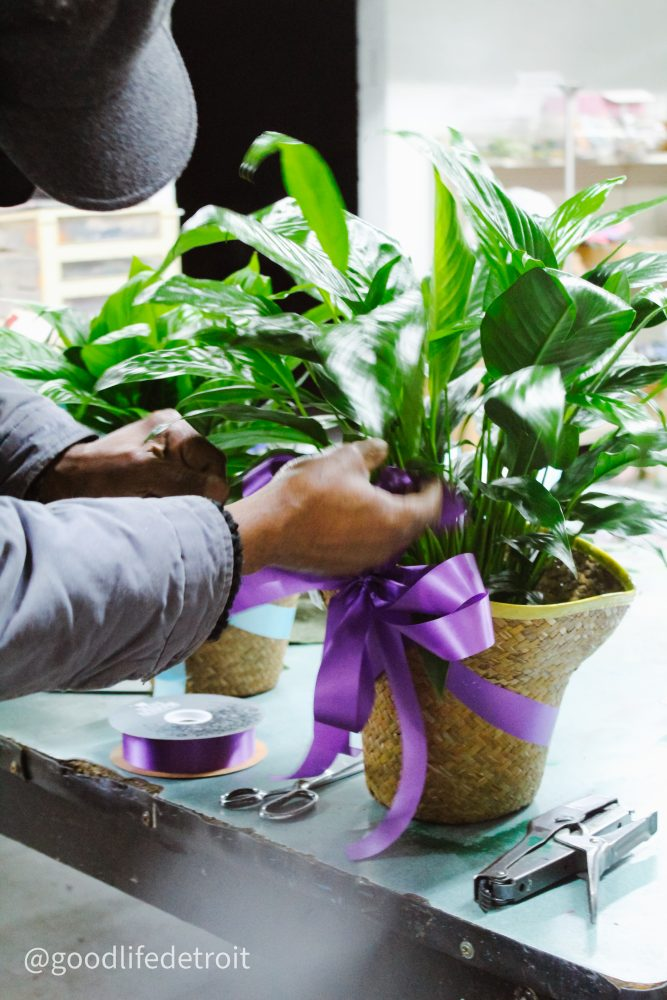 Detroit flower shops: Mr. Jay's floral business was established in 1983. Located at 10500 Mack Avenue on Detroit's east side.