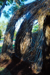 A close up view of the details of 'Stickwork' by Patrick Dougherty.